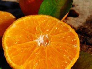 Caja de mandarinas sin pepitas 10kg