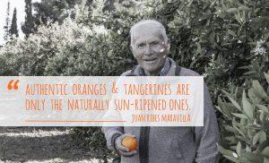 oranges maravilla